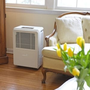 best energy efficient dehumidifiers for basement